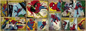 1-435_Marvel_Comic_Spiderman_hd